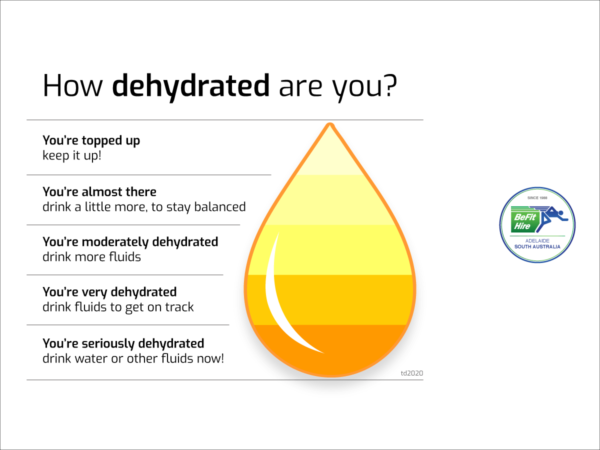 Hydration Chart by BeFit Hire Adelaide